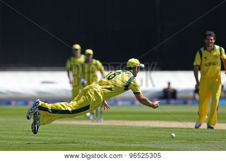 CARDIFF, WALES - June 04 2013: Australia's Mitchell Marsh fielding during the ICC Champions Trophy warm up match between India and Australia at the Cardiff Wales Stadium