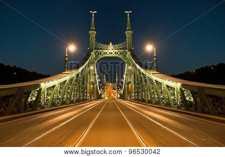 Liberty Bridge, Budapest by night. Hungary