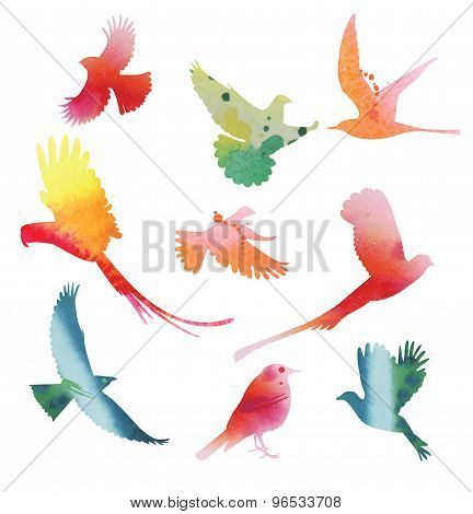 Set of birds in flight. Watercolor silhouettes.