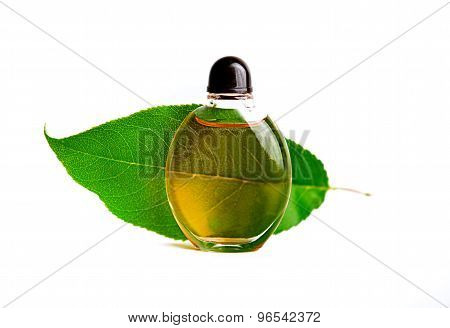 Oil And Green Leaf