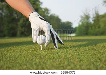 Selective Foccus Of Golfer's Hand Placing Ball On Tee