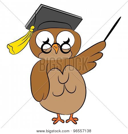 An image of a cartoon wise owl.