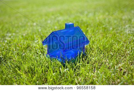 Little blue house on green grass