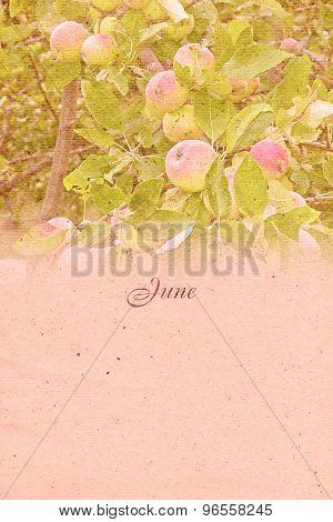 Stylized Vintage Background For Calendar Month. June