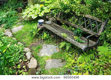 bench in shady garden