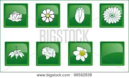 Green Buttons Icon Flowers