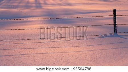 Fence Wire Pink Blue Snow