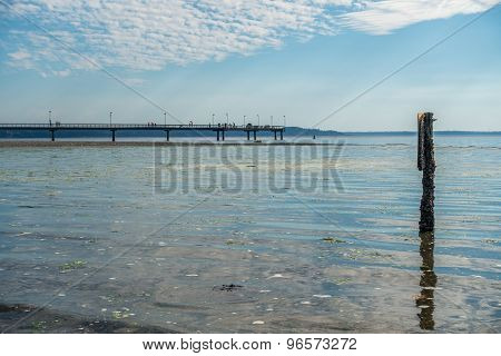 Pier At Low Tide