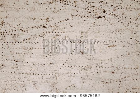 wood and white paint texture