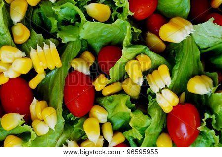 Closeup Salad Inside The Bowl