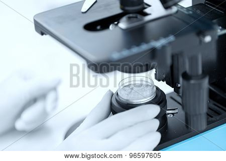science, chemistry, biology, medicine and people concept - close up of scientist hands with microscope and powder test sample making research in clinical laboratory
