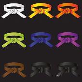 foto of karate  - karate do martial arts color belts icons set eps10 - JPG