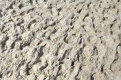stock photo of sand gravel  - Beach sand creates the background at the beach in Kolobrzeg in Poland - JPG