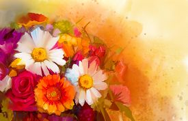 stock photo of yellow  - Closeup Still life of white yellow and red color flowers  - JPG