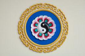 image of yin  - colorful yin - JPG