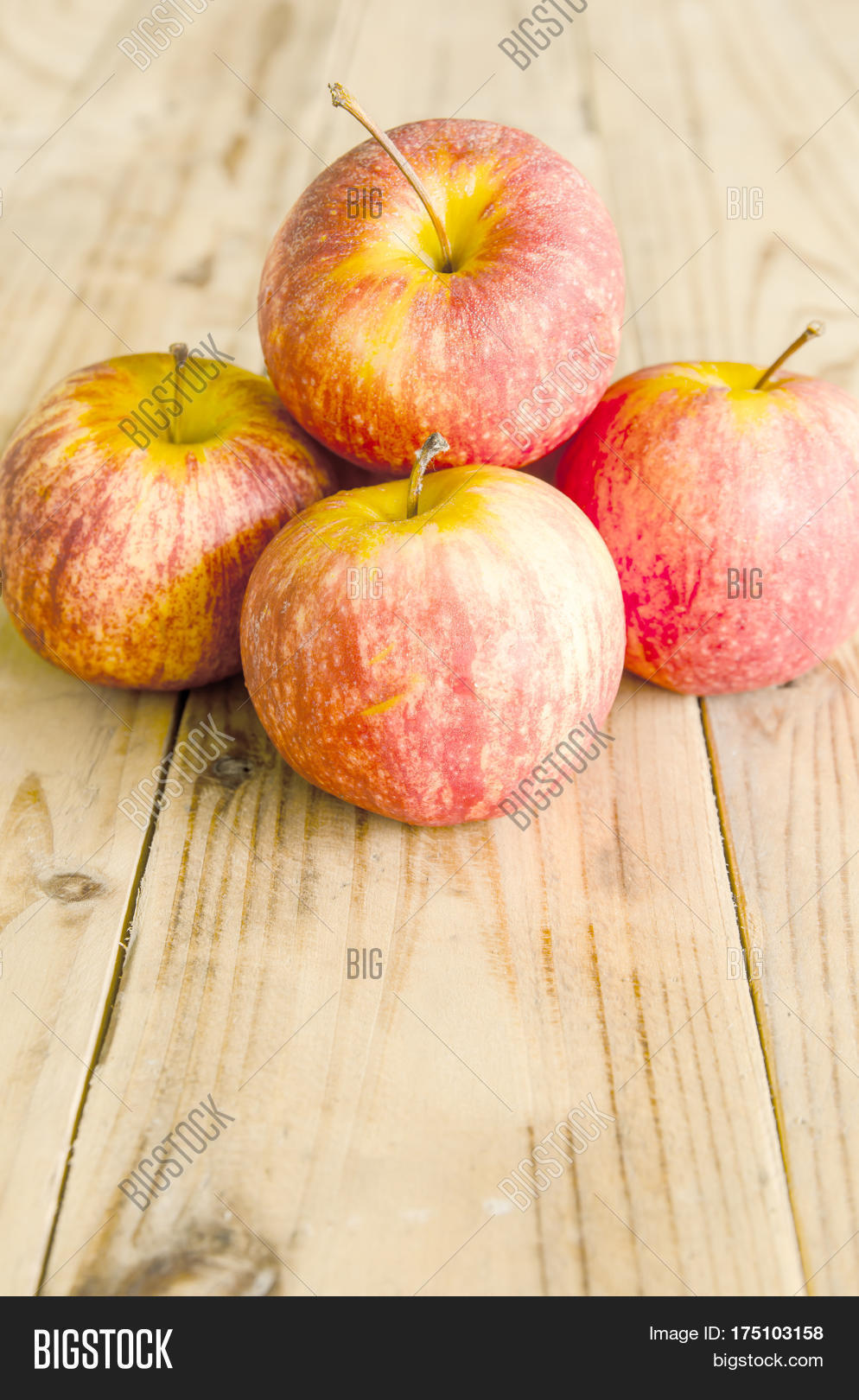 how to tell if gala apples are ripe