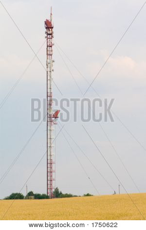 Tv Tower - Close View