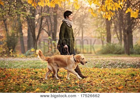 A girl and her dog (Labrador retriever) walking in a park in autumn