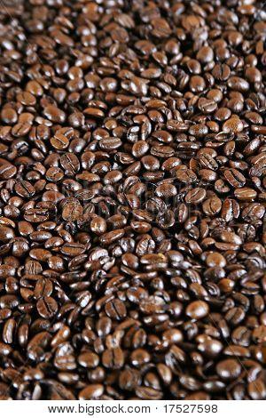 Coffee espresso bean detail background image