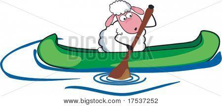 sheep in canoe