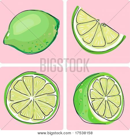 icon set - lime fruit