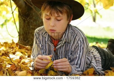 Boy In Autumn Leaves Foliage