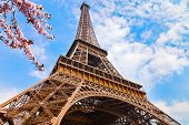 Eiffel Tower in Paris at spring, France poster