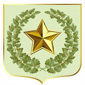 Raster version of vector green oak and a gold star on a escutcheon (contain the Clipping Path of all