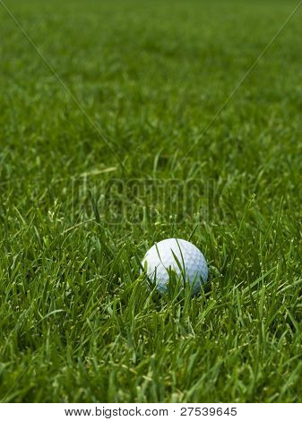 golf ball lying on green lawn