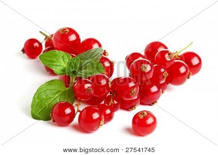 redcurrant racemes and mint leaves on white background