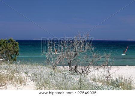 Mastichari beach on Kos Island Dodecanese