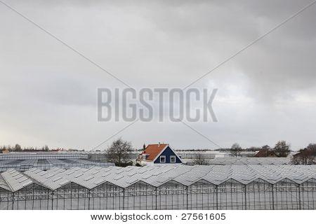house between greenhouses