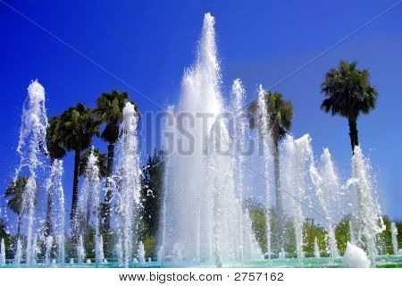 Tropical Fountain