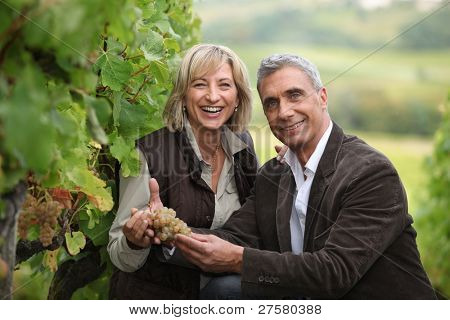 Vineyard owners holding a bunch of grapes