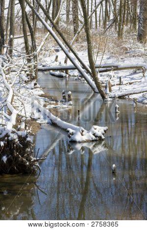 Snowy Mountain Brook