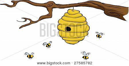 蜂巢 库存矢量图和库存照片 | bigstock