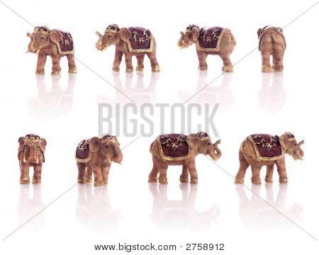 Small Elephant Models