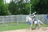 image of jousting  - knight on a white horse in a jousting match - JPG