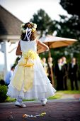 picture of flower girl  - flower girl dropping rose petals during a wedding