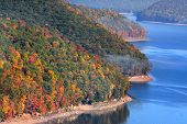 Allegheny national forest landscape in fall time