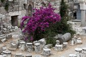 Fortress of the Knights of Saint John of Rhodes on Kos