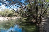 River Side Retreat Great Fishing Western Nsw Austrailia poster