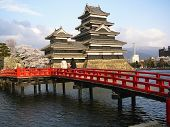 picture of shogun  - Matsumoto Castle in the Japanese Alps during Cherry Blossom  - JPG