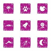 Orchard Icons Set. Grunge Set Of 9 Orchard Icons For Web Isolated On White Background poster