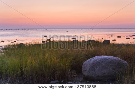Bick Stone Between Reed Near Sea At Golden Or Pinkish Sunset
