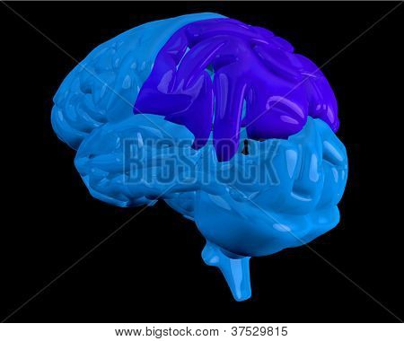 Blue brain with highlighted dark blue parietal lobe on black background