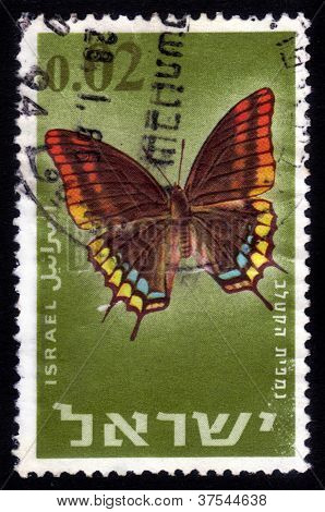 Butterfly Two-tailed Pasha Or Foxy Emperor