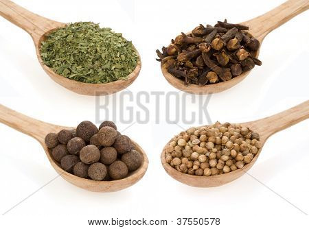 spices in spoon collage isolated on white background