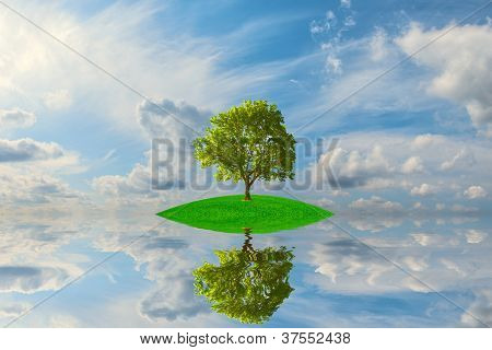 Green Island With Lonely Tree