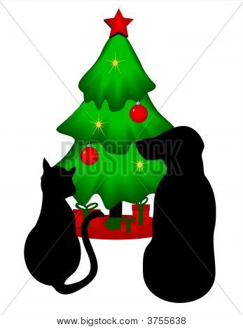 Isolated Pets Christmas